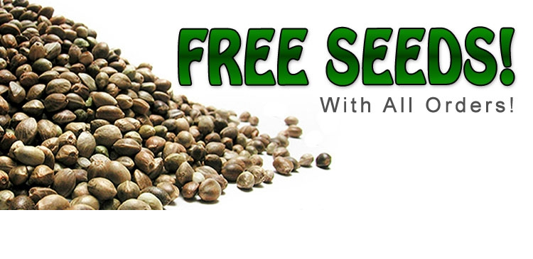 The Auto Seeds Collection
