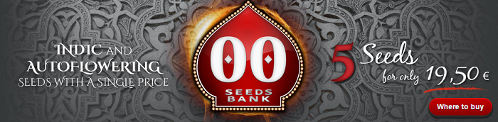 00 Seeds Bank Cannabis Seed Collection