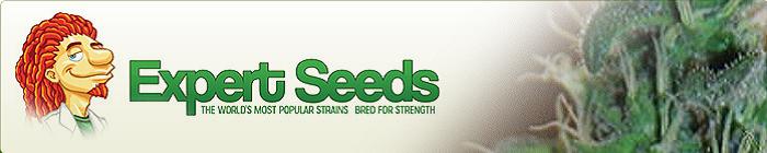 Buy Expert Seeds Online
