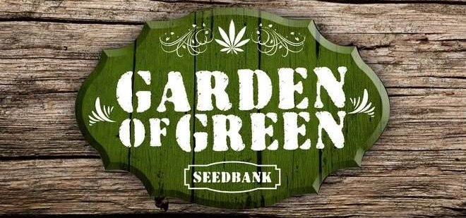 Buy Garden Of Green Seeds Online