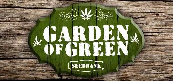 Buy Garden Of Green Seeds Online