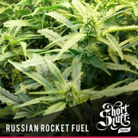 Auto Russian Rocket Fuel