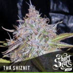 Auto Seeds - Tha Shiznit