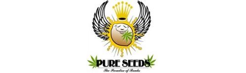 Buy Pure Seeds Online