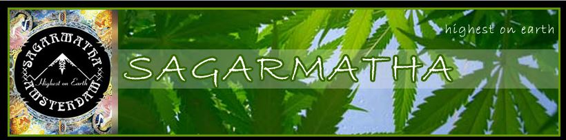 Buy Sagarmatha Seeds Online