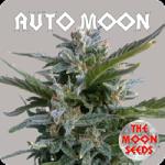 Auto Seeds - Auto Moon