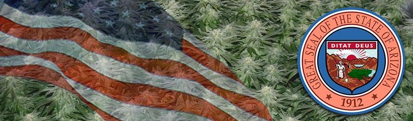 Buy Autoflowering Marijuana Seeds In Arizona