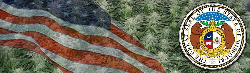 Buy Autoflowering Marijuana Seeds In Missouri