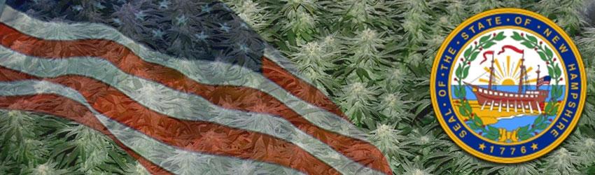 Buy Autoflowering Marijuana Seeds In New Hampshire
