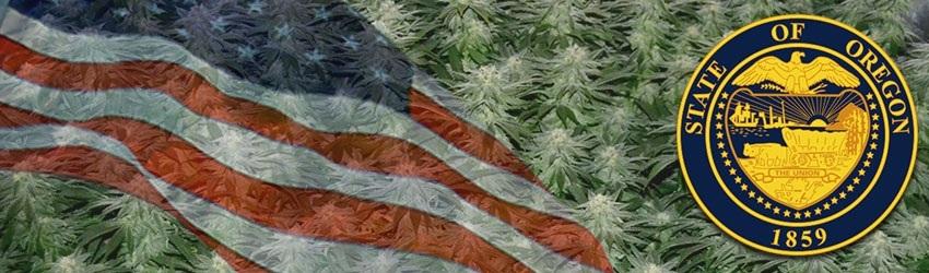 Buy Autoflowering Marijuana Seeds In Oregon