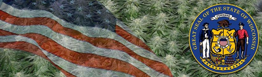 Buy Autoflowering Marijuana Seeds In Wisconsin