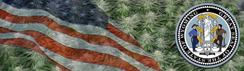 Buy Autoflowering Marijuana Seeds In Wyoming