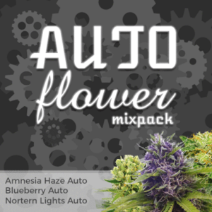 Auto flowering Mixpack