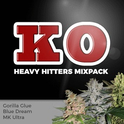 Heavy Hitters Mixpack Cannabis Seeds