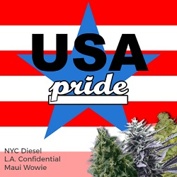 USA Pride Mixpack Cannabis Seeds